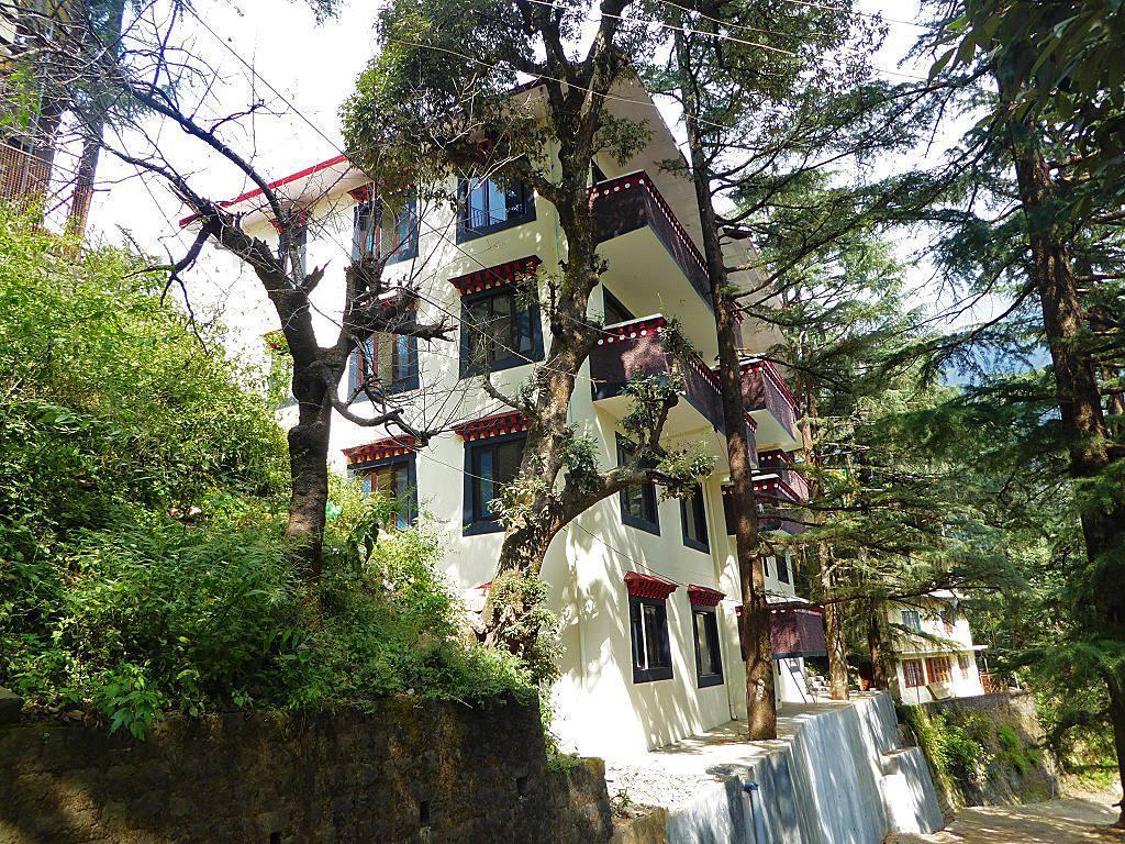 5 stöckiges Girls Hostel unter Bäumen im Sonnenlicht.