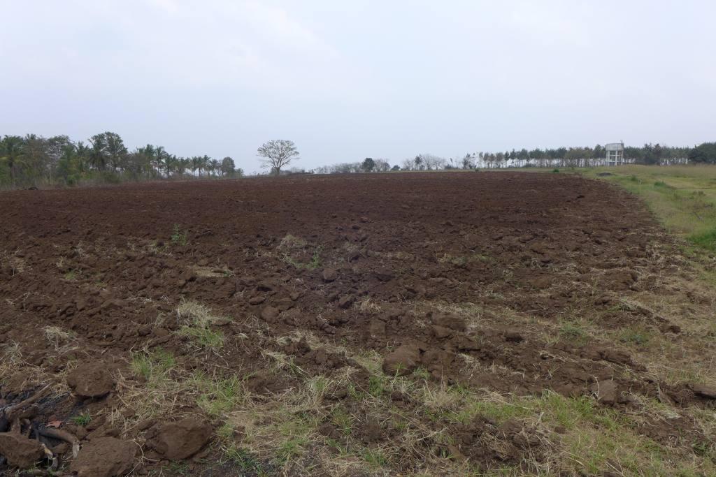 Feld in Vorbereitung für neue Teeplantage der Tibeter in Miao