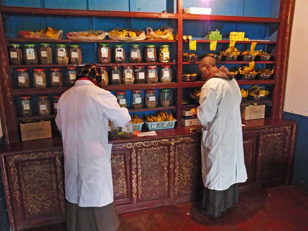 Studenten der Astrologie und tibetischen Medizin